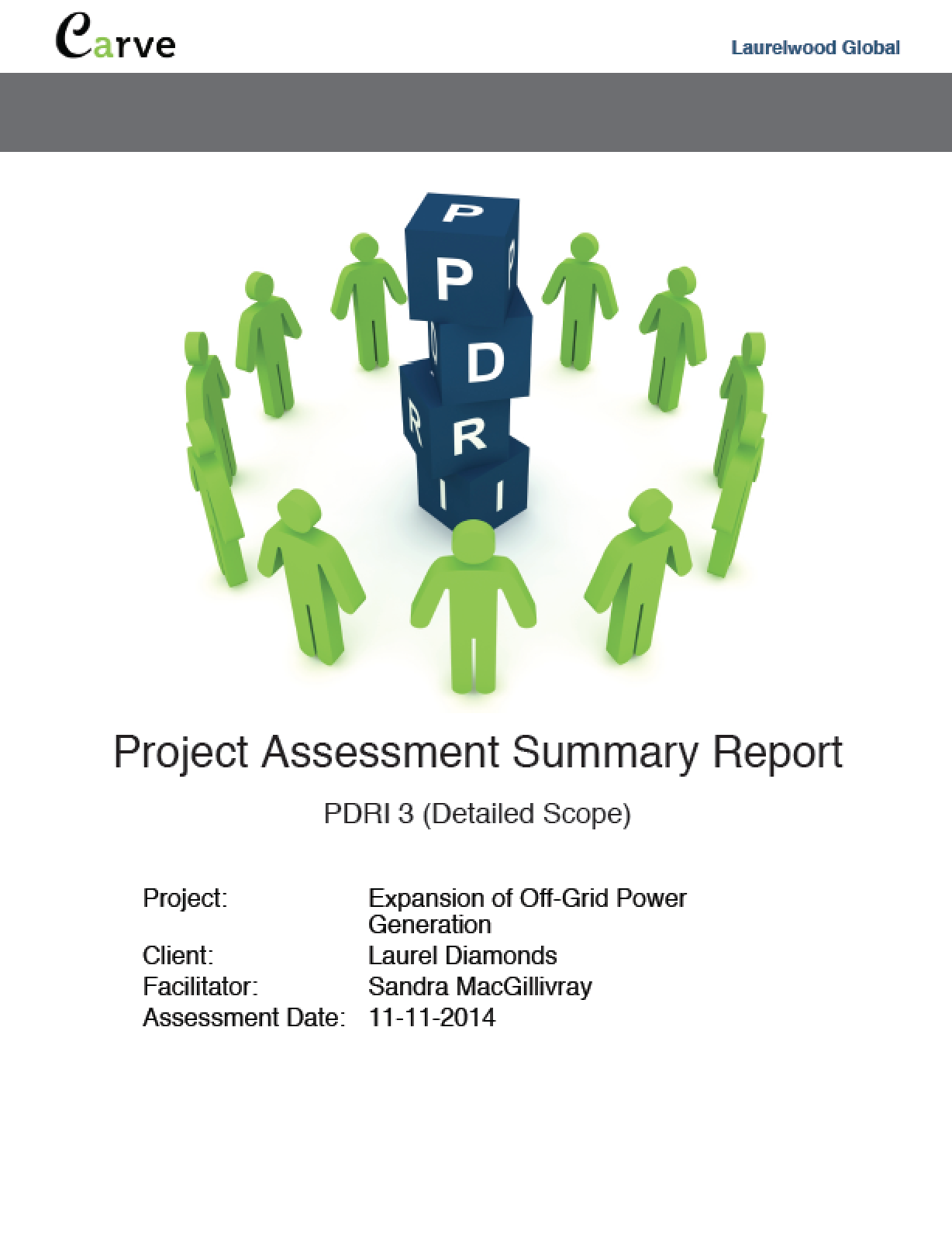 PDF summary report generated for the PDRI assessment desired.